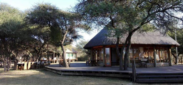 Monkey Camp at Marataba Game Reserve