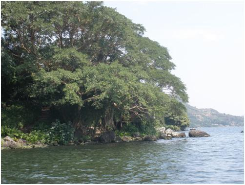 Mfangano Island Camp, Lake2